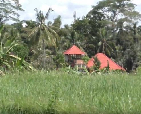 Penestanan Village / Bali