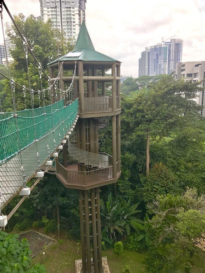 Kuala Lumpur Bukit Forest
