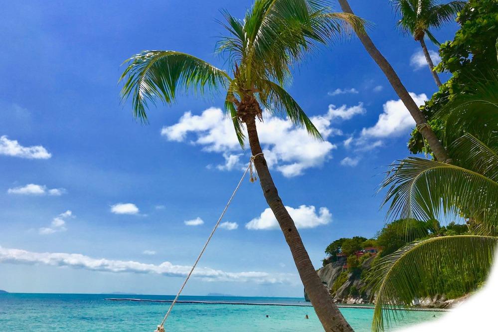 Koh Phangan Strand mit Palmen